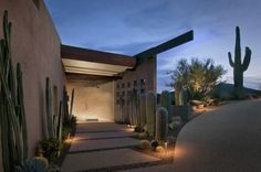 En los jardines modernos prima el diseño lineal y minimalista y el cactus es un gran aliado a la hora del diseño de este tipo de jardines...