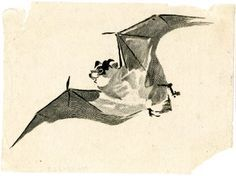 Japanese print of a flying bat from the British museum Fruit Bat, Halloween Prints, Sketchbook Inspiration, Japanese Prints, Sculpture, Illustrations, Museum Collection, British Museum, Beautiful Paintings