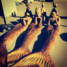 Mako Mermaids - The lovely ladies gemma, allie and amy with their tails