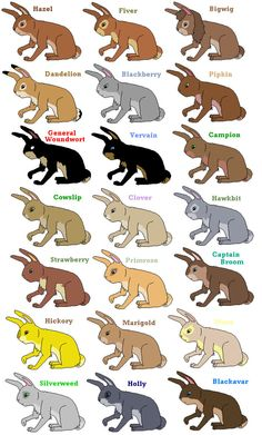 was VERYVERYVERY bored.i am a watership down fan!since i don't live in canada,i didn't get 2 see tha series on TV,but i watches alot on youtub. Watership Down Piccy I Love Books, Good Books, My Books, Watership Down Quotes, Richard And Adam, Rabbit Names, What Is Reading, Last Unicorn, Rabbit Art