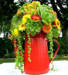 (link) 20 Succulent Planters You'll Love ~ PIC: beautiful variety of vibrant greens, yellows & orange succulents to coordinate with the use of an orange porcelain coffee pot. ~ for more great PINs w/good links visit @djohnisee ~ have fun!