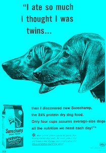 Please Support Our Advertisers:  Surechamp Dog Food