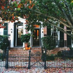 "enchanting-autumn: ""  Pumpkins and Porches - Garden District, New Orleans, Louisiana by Laura Steffan Via Flickr: Processed with VSCOcam with f1 preset """