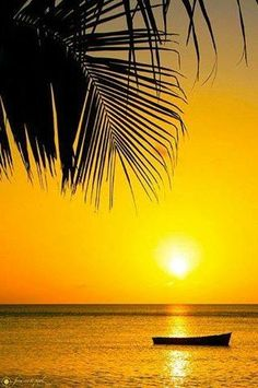 Soleil-sun of Martinique Beautiful World, Beautiful Places, Beautiful Scenery, Foto Picture, Magic Places, Romantic Honeymoon Destinations, Beautiful Sunrise, Dream Vacations, Places To See