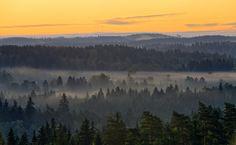 Foggy countryside landscape