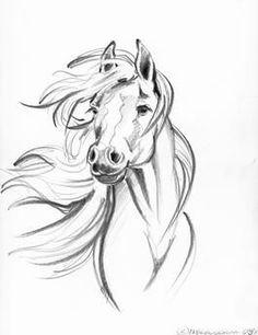 Jasper the cat loves to climb. He'll climb anyth. - : Jasper the cat loves to climb. He'll climb anyth… – – Pferde tattoos – Horse Drawings, Pencil Art Drawings, Animal Drawings, Drawing Sketches, Drawing Art, Tattoo Sketches, Arte Equina, Horse Tattoo Design, Horse Sketch