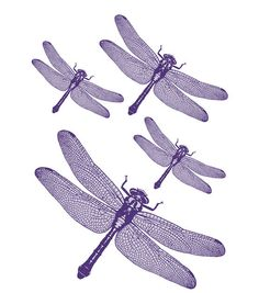 Brewster Komar Peel Stick Libelle European Wall Decals >>> Find out more about the great product at the image link. (This is an affiliate link) Dragonfly Wall Art, Dragonfly Wallpaper, Brewster Wallpaper, Wall Appliques, Butterfly Nursery, All Things Purple, Diy Wall Art, Kidsroom, Whimsical Art