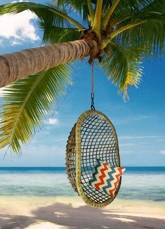 Big size hanging chair for all in the family on