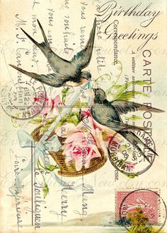 birds flowers - printable antique vintage postcard collage for image transfer, decoupage, cardmaking - 318