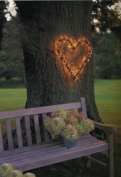 Reception or outdoor ceremony