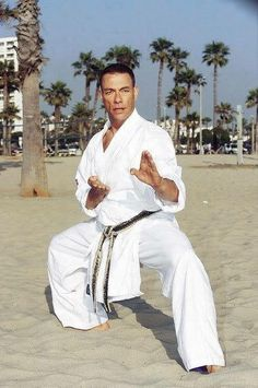 Hey guys, do you split ? Film Jackets, Claude Van Damme, Kelly Hu, Dolph Lundgren, Shotokan Karate, Martial Arts Styles, Hand To Hand Combat, Martial Artists, Jackie Chan