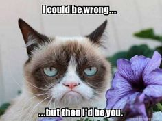 #GrumpyCatMeme For more Grumpy Cat stuff, gifts, quotes and meme visit www.pinterest.com/erikakaisersot