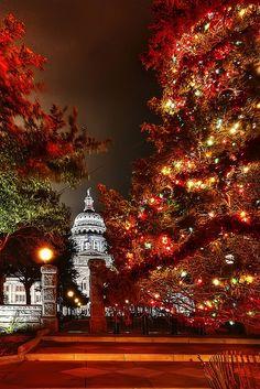 Austin - Texas - Capitol Christmas Tree #travel #austin #usa