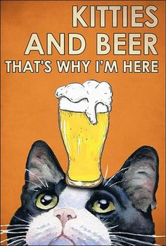 Kitties and beer that's why i'm here poster Crazy Cat Lady, Crazy Cats, Cute Cats, Funny Cats, Jellicle Cats, Cat Posters, Cat Quotes, Vintage Cat, Cat Drawing