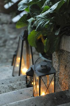 romantic and rustic. Romantic, Rustic, Lights, Garden, Party, Summer, Vineyard Wedding, Highlight, Summer Time