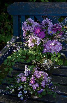 Drømmer du om et stort bed i haven, hvorfra du kan plukke både blomster og grønt til buketter? Følg vores guide til at anlægge et smukt skærebed!