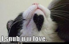 I snub u w love.
