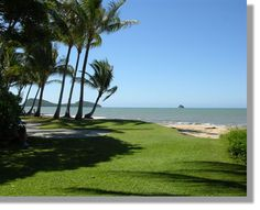 Palm Cove Australia Coving, Google Images, Palm, Places Ive Been, Trips, Viajes, Travel, Traveling
