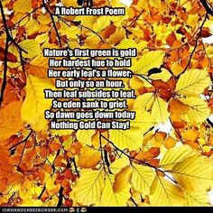 Nothing Gold Can Stay ~ Robert Frost