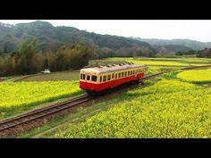 Kominato Railway passing through fields of rapeseed flowers Chiba Japan 菜の花畑を走りぬける小湊鐵道 千葉県市原市 2013年3月19日
