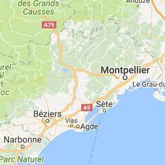 Toutes les informations sur l'élevage Des Ops De Lif Thraser / Von Der Kroning Keiser, élevage de Cavalier king charles spaniel situé dans le département 34 - Hérault en France sur Eleveurs-Online.com