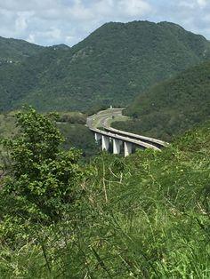 Vista Desde El Arból Solitario, Cayey, Puerto Rico