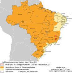 Gelbfieber in Brasilien - Dringend Reiseimpfung empfohlen - https://www.ratgeber.reise/news/gelbfieber-brasilien-urlaub-2017-19908/
