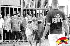 torodigital: Prosiguen los festejos taurinos en Almazora