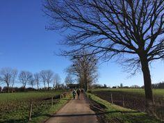 Blog Wiel Beijer: Als ik wandel herstelt de economie