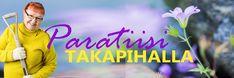 Askartele talviseksi koristeeksi kasvihuone valosarjoineen - Paratiisi takapihalla Avatar, Backyard, Garden, Movie Posters, Crafts, Cookies, Decoration, Mini, Winter