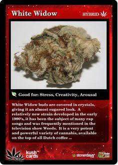 White Widow Medical Marijuana Reviews - THC Finder