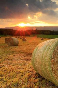 Beautiful country scene