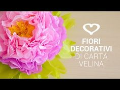 Tutoial: Come realizzare un maxi fiore decoraivo di carta velina - La Figurina - YouTube