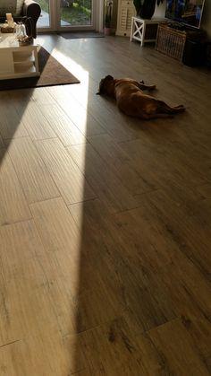 Houtlook tegels dom logwood beige