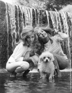 0 Swedish twin actresses Mia and Pia Genberg pose with a poodle