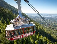 This beautiful and cosmopolitan city in British Columbia is a destination for outdoor fun like skiing Grouse Mountain and watching orcas. Choose adventures extreme—like the Capilano Suspension Bridge—or more gentle—the Vancouver Aquarium. Visit Vancouver, Vancouver Travel, Vancouver Vacation, British Columbia, Bear Habitat, Las Vegas, Vancouver Aquarium, Where Is Bora Bora, Pocono Mountains