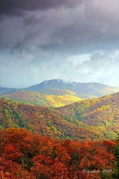 Skyline Drive in Shenandoah National Park, Virginia