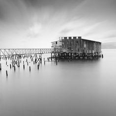 FOR THE LOVE TO BLACK AND WHITE  - As an architect, Moises Levy is singularly concerned with the manner in which light both defines and interacts with spatial environments. The same dynamic is at work in his coolly elegant, enigmatic landscape photography. Whether he's focused on a line of saplings reflected in still water, a lonely tree bearing witness to the passing darkness, or huge rocks sculpted by time into strange and wondrous shapes...