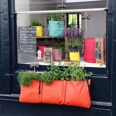 La boutique-bureau parisienne de BACSAC : un univers végétal où rencontrer l'équipe et acheter sur place ! Bienvenue !