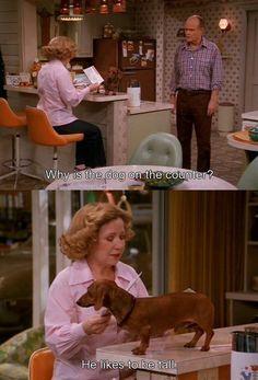 So Kitty, so dachshund. http://bit.ly/HKptm1