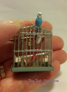 Tiny Tails Miniatures, Miniature Birds, Butterflies, Animals, Ornaments, Bowls, Jugs etc. - Specials and OOAK