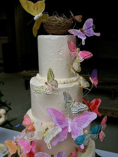 Nice Wedding Cakes With Butterflies With Posted On February 9 2011 By Mw