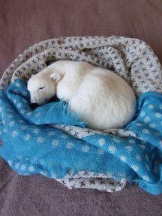 かわいい寝顔を見ていたら、つられてウトウト。。。