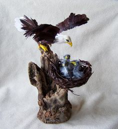 Ooak Miniature Dollhouse American Eagle with three chicks in