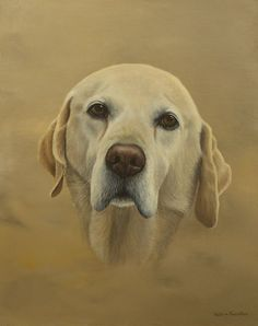 A recently finished commission of a golden Lab, acrylic on board Portrait Paintings, Pet Portraits, Graphite Drawings, Diy Canvas Art, Wildlife Art, Equestrian, Labrador Retriever, Pets, Board