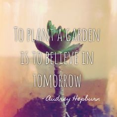 audrey hepburn quotes about garden - Google Search