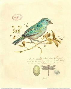 Chad Barrett - Gilded Songbird I