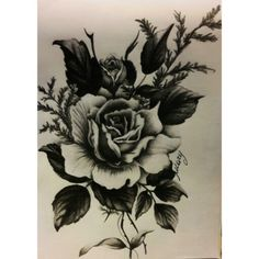 #art #roses #rose #fiori #blackwhite #black #white #graphite #carboncino #drawing #draw #work #myart