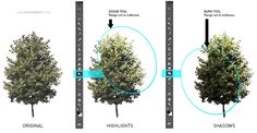 How to avoid repeating trees in post production.