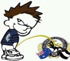 Carlton V Collingwood Carlton Afl, Carlton Football Club, You Rock, Funny Pictures, Funny Pics, Fitness Quotes, Football Team, Projects To Try, Blues